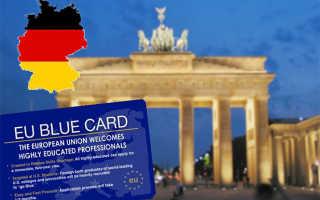 Что дает голубая карта Германии