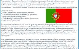 Виза в Португалию – виды, сроки и особенности получения