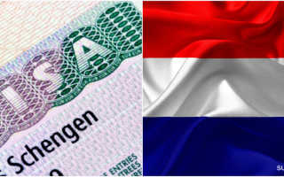 Посольство Нидерландов в Москве – адреса, функции, порядок обращения