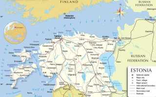 Гражданство Эстонии для россиян – способы и этапы получения