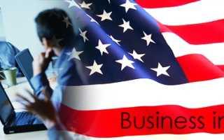 Открыть бизнес в Америке – перспективные направления, основные этапы