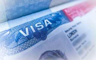 Сколько стоит виза в США – стоимость и оформление