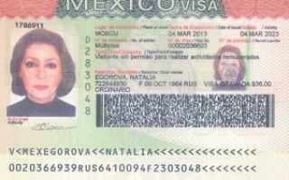 Виза в Мексику – виды, сроки и особенности получения
