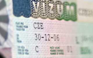 Студенческая виза в Чехию – сроки и особенности получения