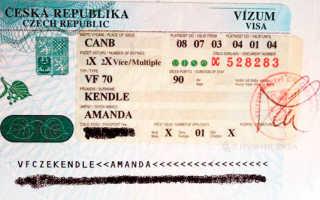 Виза в Чехию для россиян – виды, сроки и особенности получения