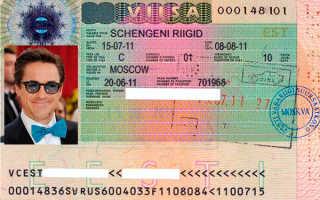 Шенгенская виза в Эстонию – сроки и особенности получения