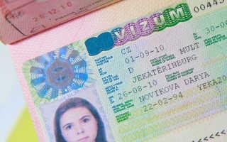 Виза в Чехию для россиян – типы и способы оформления