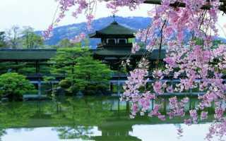 Типы японских виз – сроки и особенности получения