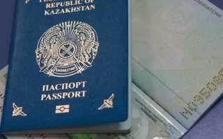 Пример заявления об отказе от гражданства Казахстана
