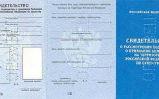 Как гражданину Украины получить гражданство РФ? Способы и инструкция