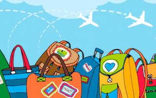 Пример основных правил бесплатного провоза багажа