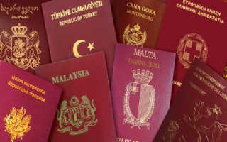 Второе гражданство для россиянина – можно ли получить?