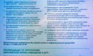 Грин-карта в Белоруссию – что это, цена и нюансы оформления