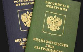 Пример ВНЖ иностранного гражданина: как выглядит