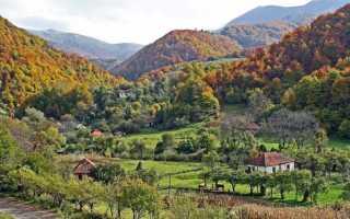 Нужна ли в Сербию виза: какие документы подготовить перед поездкой