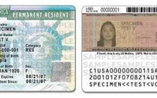 Подача заявления на грин-карту