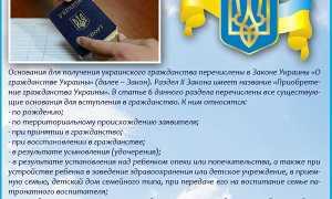 Как получить украинское гражданство – инструкция и советы эксперта