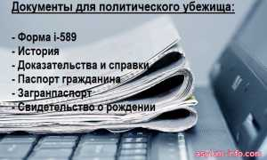 Политическое убежище в США для россиян – как получить и пакет документов