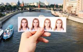 Фото для шенгенской визы – требования, размеры, освещение и другие параметры