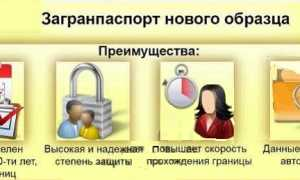 Сроки оформления загранпаспорта через госуслуги: подробная информация