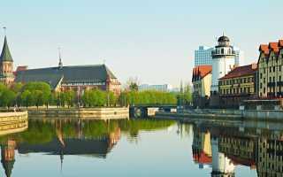Нужен ли загранпаспорт в Калининград на самолете – все тонкости перелета