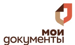 Как получить загранпаспорт в Москве через МФЦ – полная инструкция