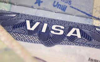 Виза в Америку – сколько стоит, виды виз, правила оформления