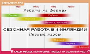 Работа в Финляндии вакансии — Трудоустройство в Финляндии для россиян