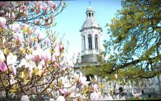 Обучение в Ирландии – как поступить, цены и рейтинг вузов
