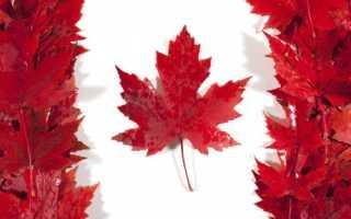 Рабочая миграция в Канаду: плюсы и минусы