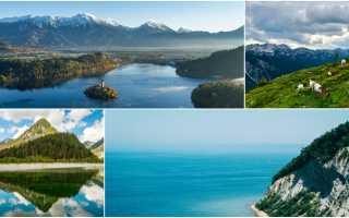 Какой климат в Словении